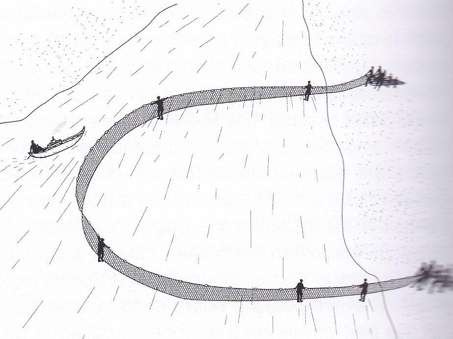 Filet de pêche traditionnel, technique de capture des poissons par encerclement