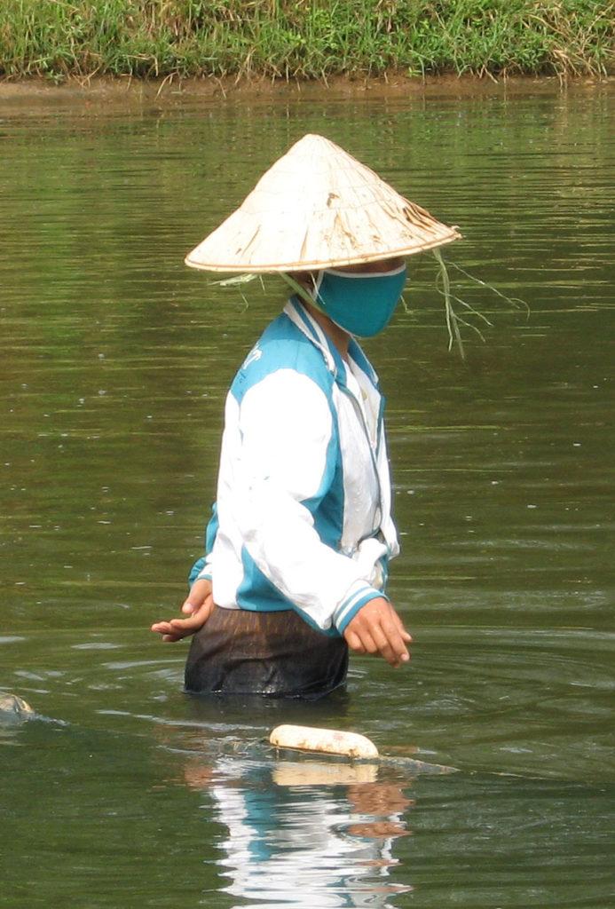 Renforcement de la capacité des femmes dans la gestion de l'eau et la pisciculture