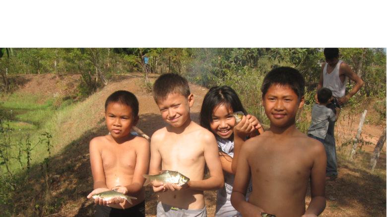 Le poisson une source de protéines animales accessible