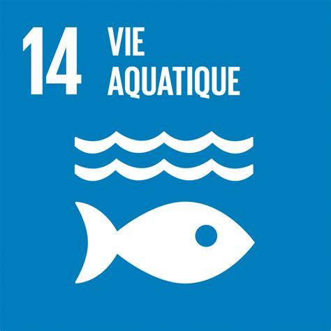 ODD n°14 Vire aquatique