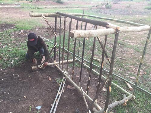 Construction d'une cage à grillons